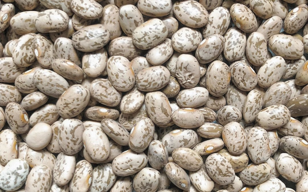 The 411 on lectins
